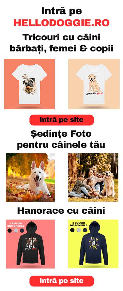 Banner - Hello Doggie - Cosmin Cengher - tricouri cu caini - hanorace cu caini