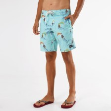 O'Neill Pm Bird Watching Boardies (9000062735_12872)