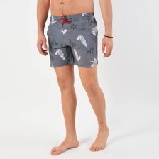 Emerson Men's Printed Volley Shorts (9000026172_38061)
