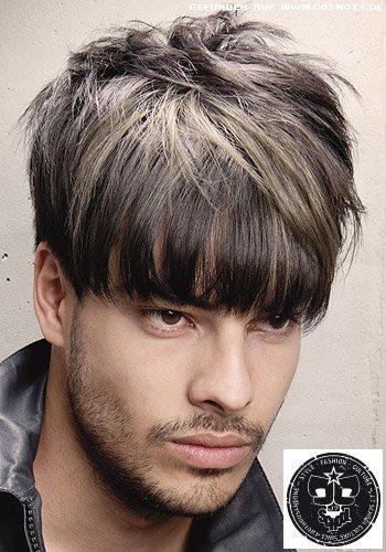 Frisuren Bilder Nach vorn gestylte Strhnen in GrauTnen  Frisuren Haare