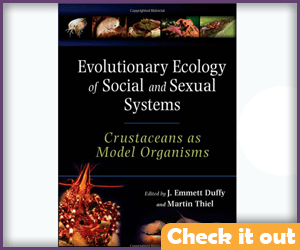 Evolutionary Ecology of Social and Sexual Systems Crustaceans.