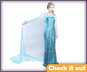 Elsa Costume Winter Dress.