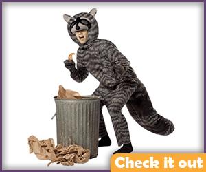 Raccoon Costume.