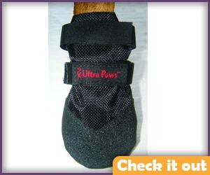 Black Dog Boots.
