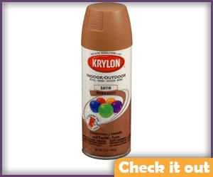 Brown-Orange Spray Paint (for gloves).