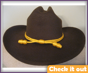 Rick Grimes Deputy Hat.