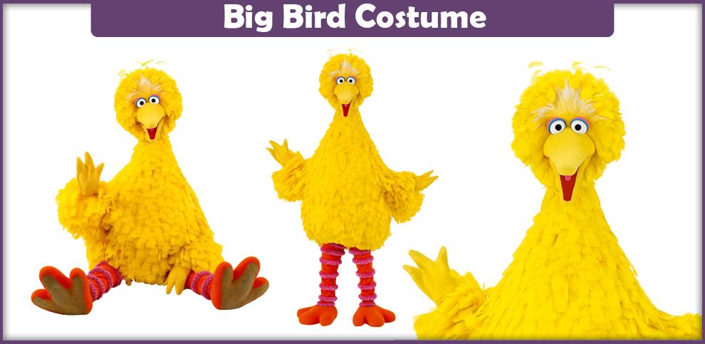 Big Bird Costume