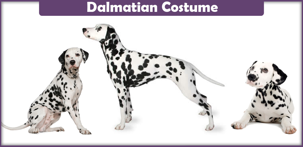 Dalmatian Costume – A DIY Guide