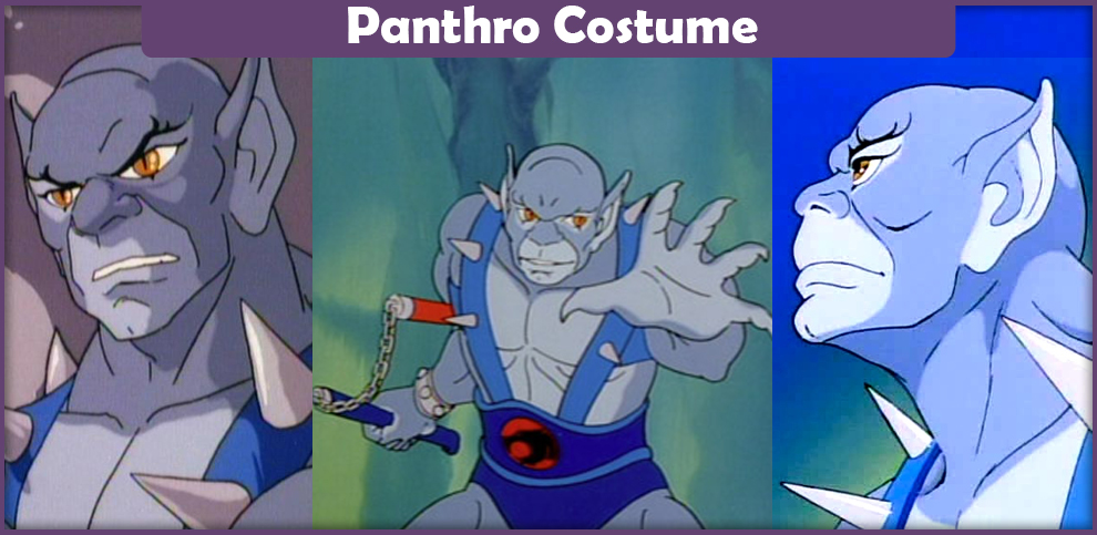 Panthro Costume – A DIY Guide