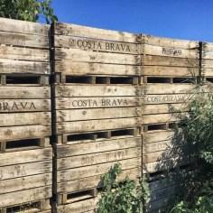 Auf Etappe 4 des GR-92 wandern wir etwas durchs Hinterland der Costa Brava. Hier wird unter anderem Obst angebaut.