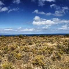 Der Wanderweg verläuft für einige Kilometer parallel zum Meer auf einer langgestreckten Ebene.