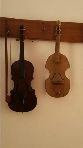 Violin type instruments