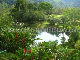 Lago Hotel Rafiki Safari Lodge Costa Rica