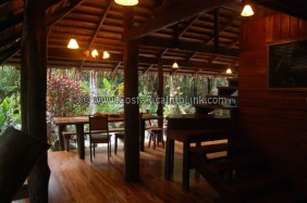 Congo Bongo Hotel Costa Rica