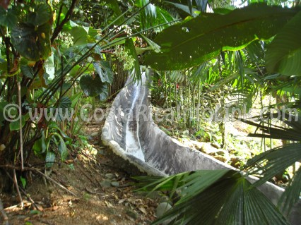 Water Slide - Rafiki Safari Lodge Hotel Costa Rica