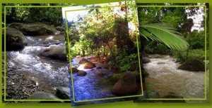 Finca Amanecer Eco Village