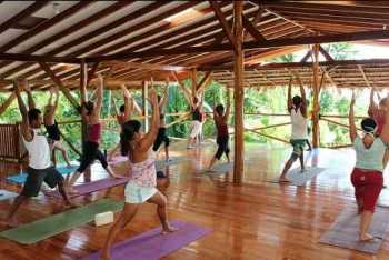 People practicing Yoga at Yoga Farm