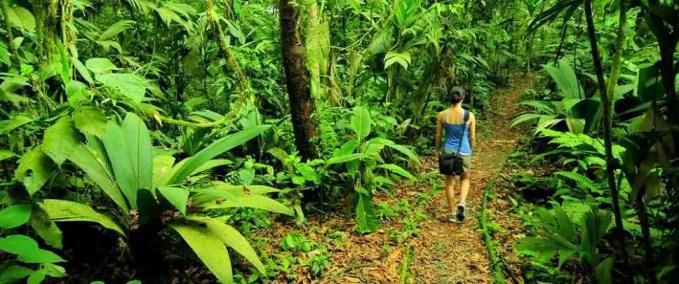 Braulio National Park, Costa Rica