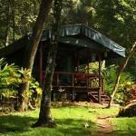 La-Leona-Eco-Lodge
