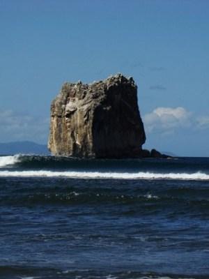Ollie's Point Surf Camp 2