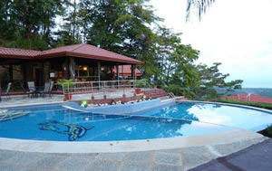 Whales-and-dolphins-eco-lodge