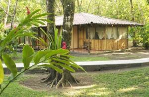 turtle-beach-lodge-hotel