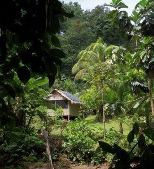 Tamandua Biological Station  2