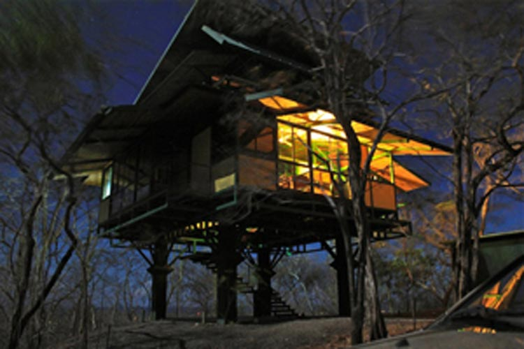 Jungla Vista treehouse at night