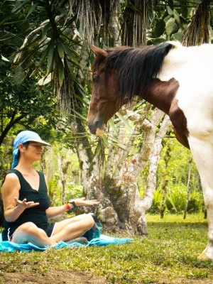 Kindred Spirits - Horse Riding Treks and Retreats 3