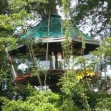 Nature-Observatorio