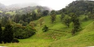 Terraviva area