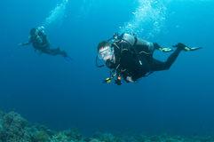 scuba-diving-buddies-enjoy-dive-24425479