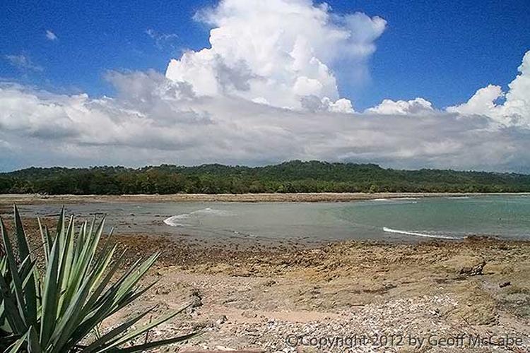 cabuya-costarica