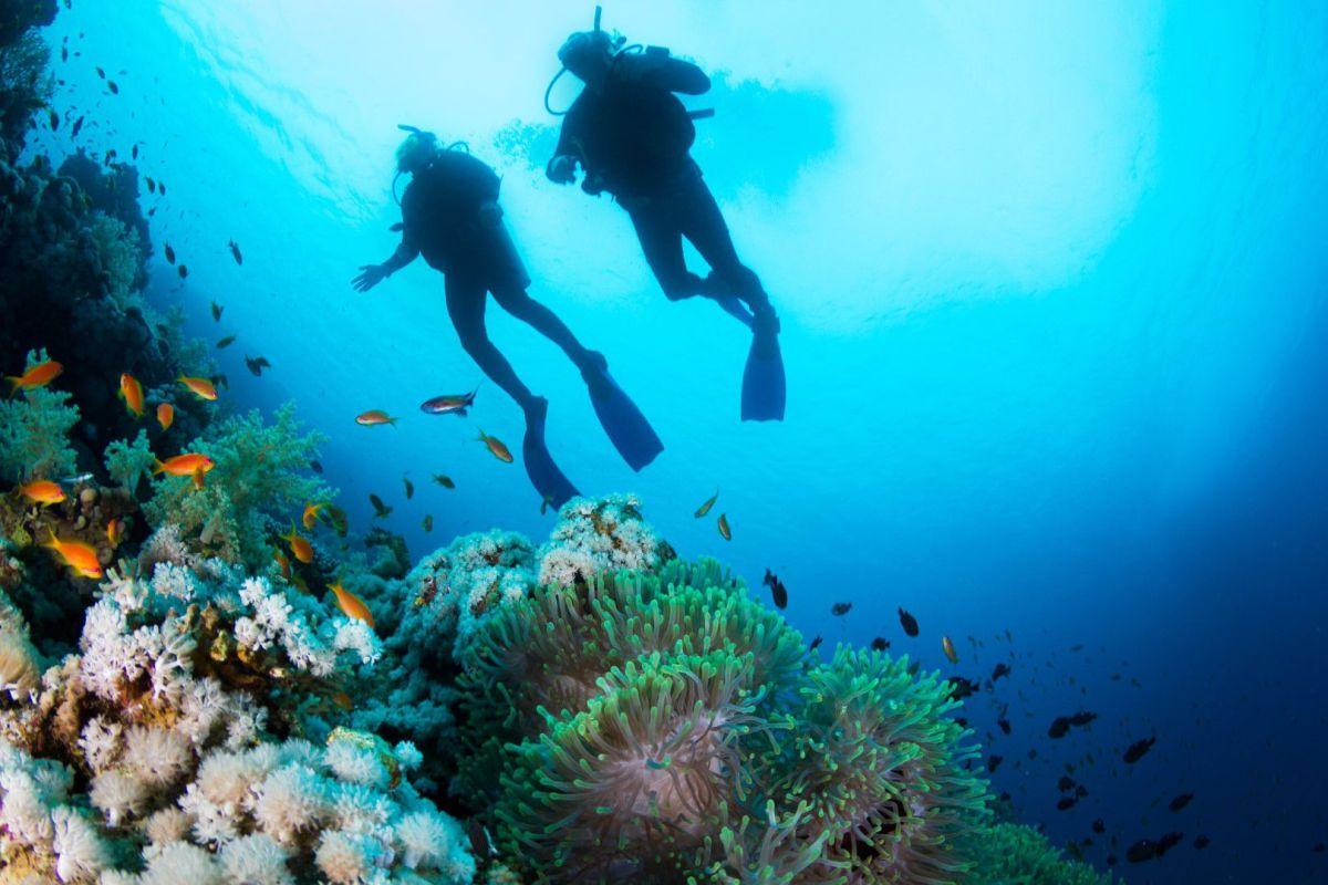 Rock Divers Costa Rica