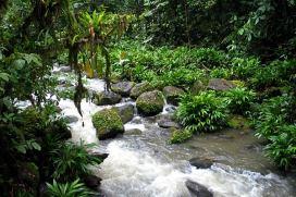 green tourism costa rica