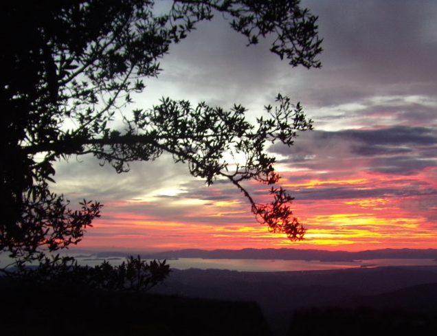 Nicoya Gulf Sunsets