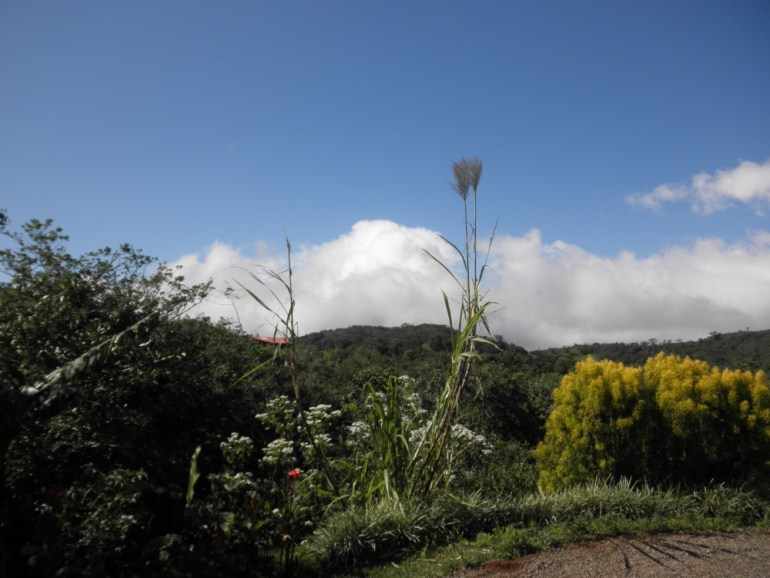 view from 1 BR and ot for sale in san ramon costa rica