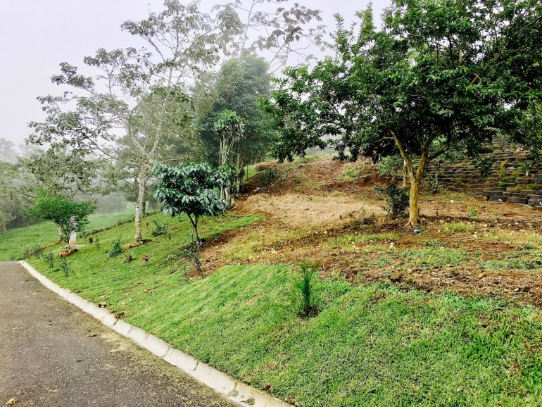 Mountainview Lots for Sale San Ramon Costa Rica