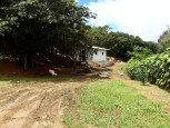 organic coffee farm for sale costa rica san ramon