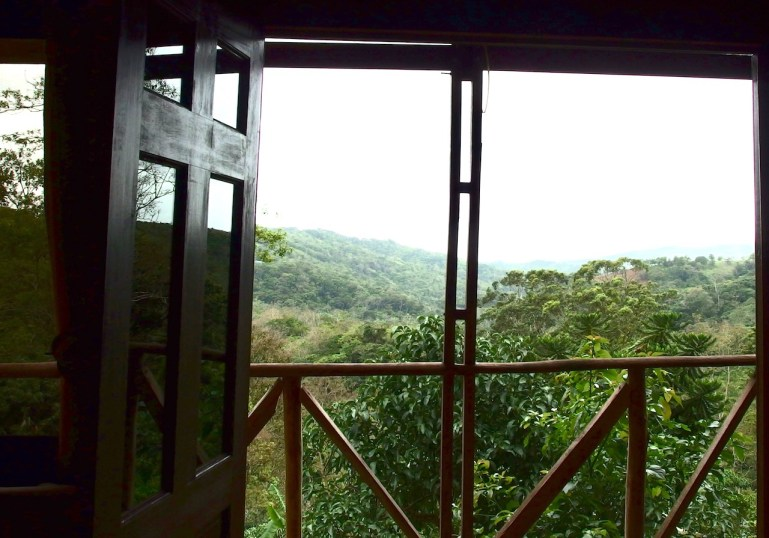 Beautiful Coffee Finca and Homestead with Organic Views