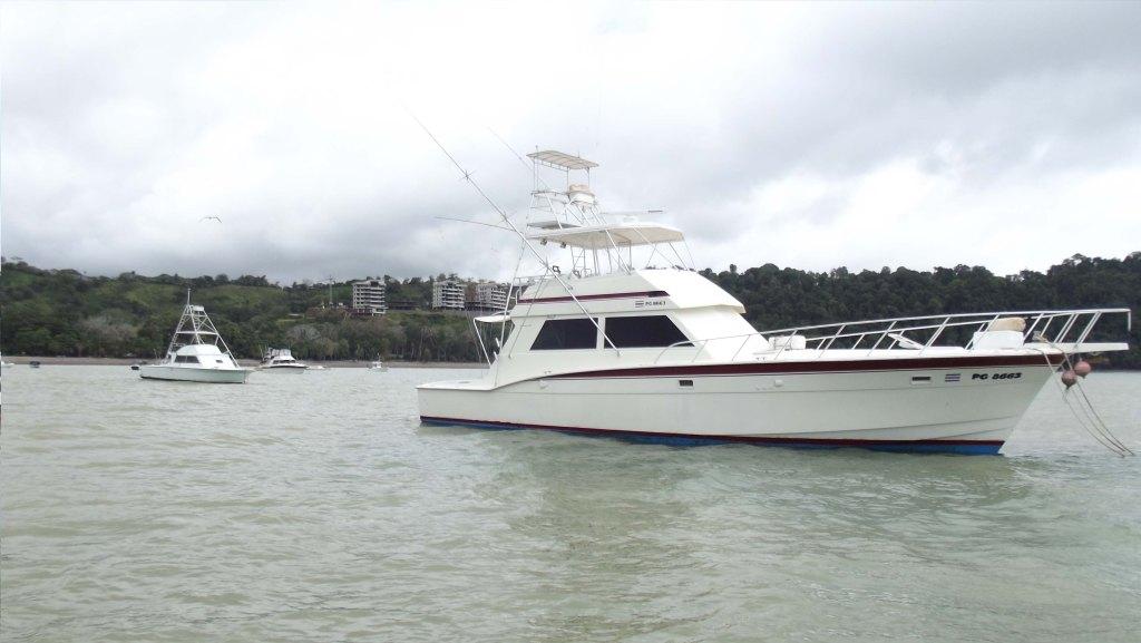 los suenos fishing charter 55 feet