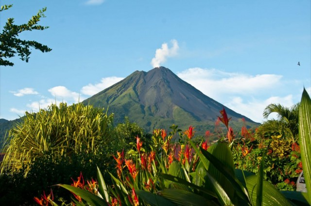Arenal Volcano and Tabacon Hot Springs and Spa