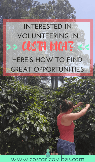 If you've ever thought about volunteering in Costa Rica, you need to read this! Click to find out great opportunities for all types of volunteer work. #costaRica #volunteer
