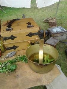 Seeping herbs