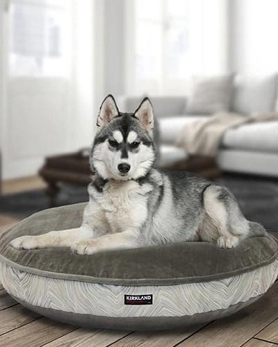 kirkland signature pet beds costco