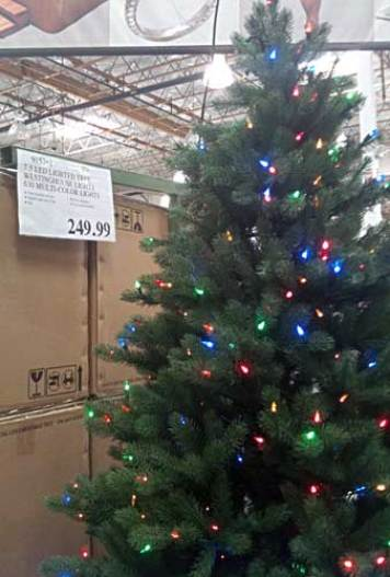 Image result for costco christmas tree