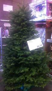 Costco Fresh Christmas Tree