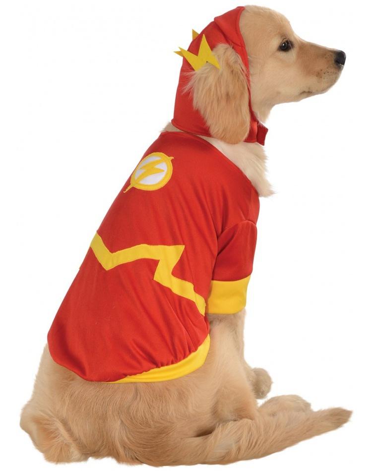 Russell Terrier Wigs Jack