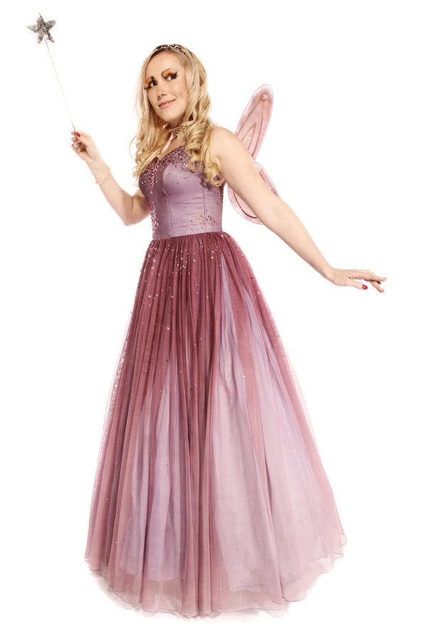 FAIRY PRINCESS COSTUME C