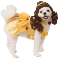 Pet Costumes for Dogs and Cats